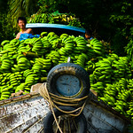 Bananas on a boat at Phong Dien, in Vietnam's Mekong Delta