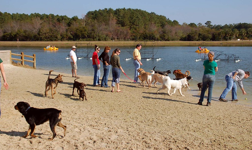 Dog Park Charleston Sc