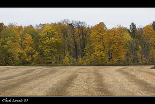 After-the-harvest_IMG_7254 | by claude laramée