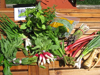 This week's box from the farm #2 | by katbaro
