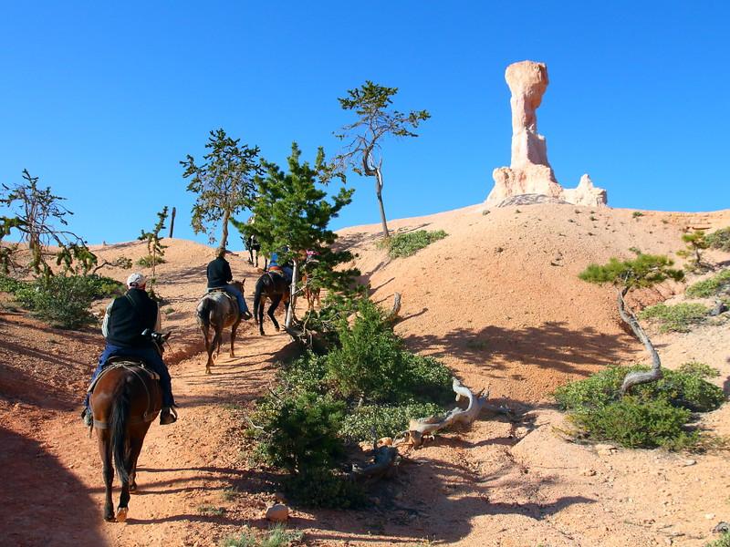 IMG_4529 Mule Ride