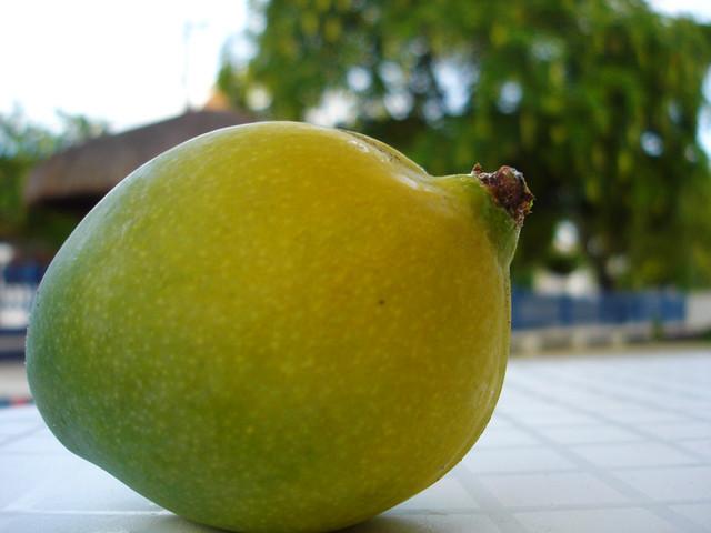 MANGA ESPADA (o quilo) | Sacolão