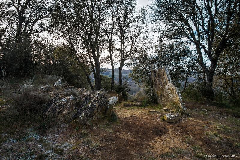 Dolmen de Puigsespedres