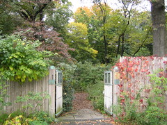 Native Flora Garden early fall color | by Brooklyn Botanic Garden