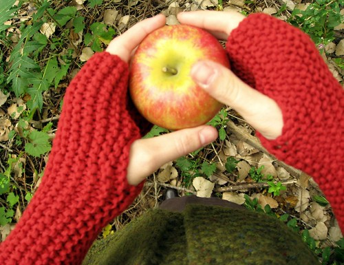 fingerless mitts | by flint knits