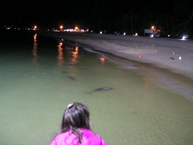 Tangalooma Island Resort Traveller Reviews
