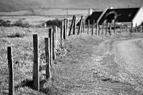 Laneway fence | by Donncha Ó Caoimh