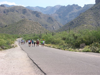 Sabino Canyon run | by midwinter