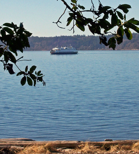 Lincoln Seattle: The Fauntleroy (West Seattle