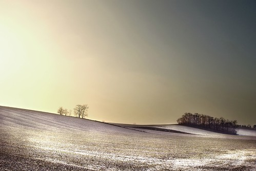 winter landscape in eastern Austria | by Dan65