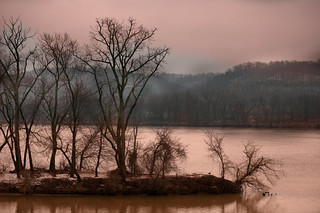 Ohio River Island | by dailyinvention
