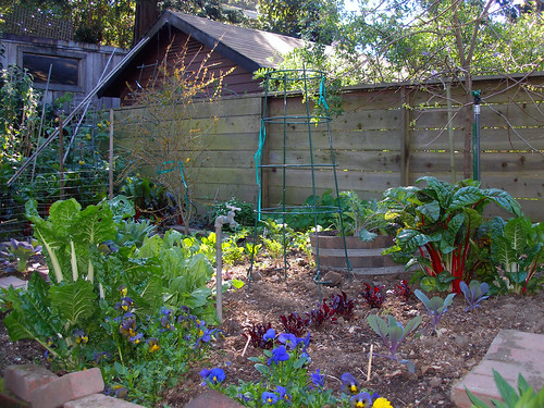 Backyard Vegetable Garden The Beautiful Garden That
