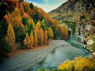 Autumn on the Shotover River | by Peter Sundstrom