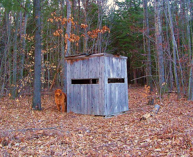 Camper And The Deer Blind I Don T Hunt Only With My