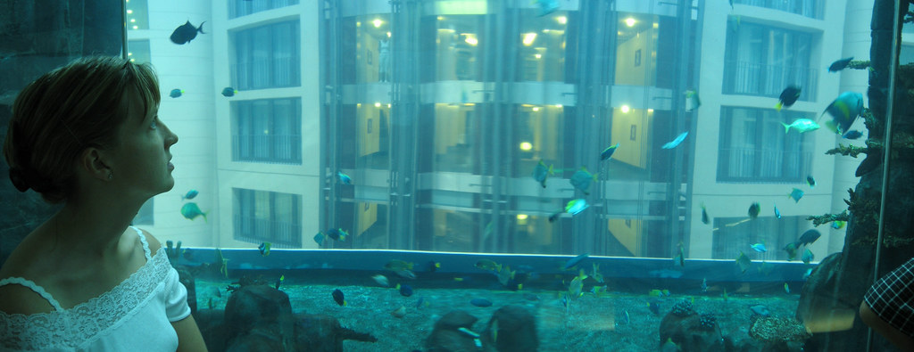 elevator aquadome with aquarium berlin germany nice elevat flickr. Black Bedroom Furniture Sets. Home Design Ideas