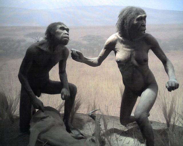 como eran inicialmente los hominidos yahoo dating
