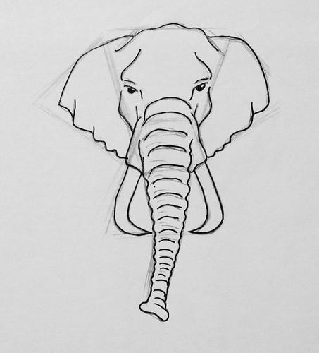 Elephant head t te d 39 l phant dessin de la t te d 39 un l flickr - Dessin d un elephant ...