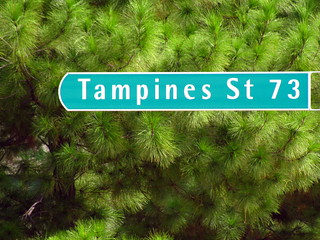 Tampines St 73 | by soham_pablo