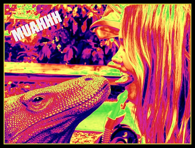 Lizard Kiss | Created with www.dumpr.net - fun with your ...