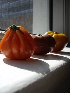 Heirloom tomatoes | by Vincci T