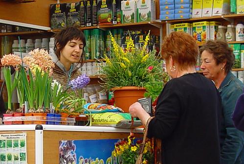Centro de jardiner a viveros alegre viveros alegre tiene - Centros de jardineria madrid ...