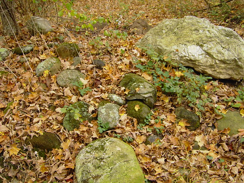 Stones in UConn Forest | by WNPR - Connecticut Public Radio
