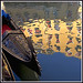 Rita Crane Photography:  Italy / Venice / gondolas / reflection / canal / beautiful / Gondola Orseolo III, Venice