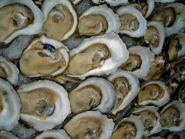 Garlic Oysters on the Half Shell   The tray went on ...