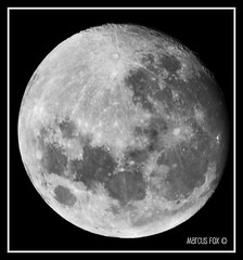 Moon 20th Feb, 2008 | by Rain Forest Man