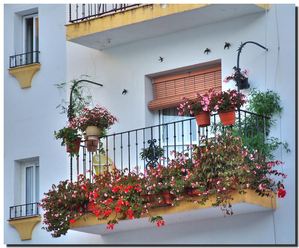 Balcony with swallows balc n con golondrinas marbella for Balcon in english
