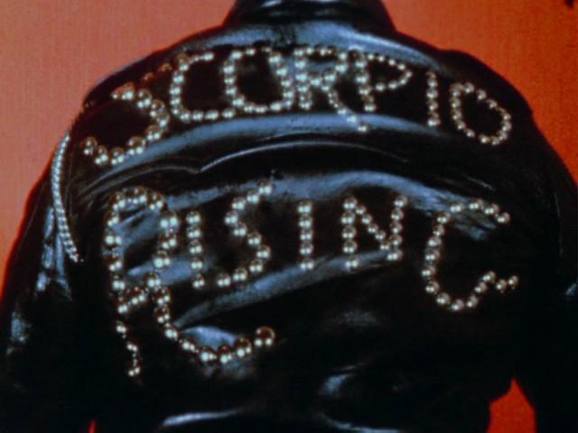 scorpio rising   scorpio risin...
