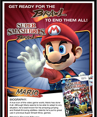 Mario Super Smash Bros. Brawl email | by Erik Mallinson