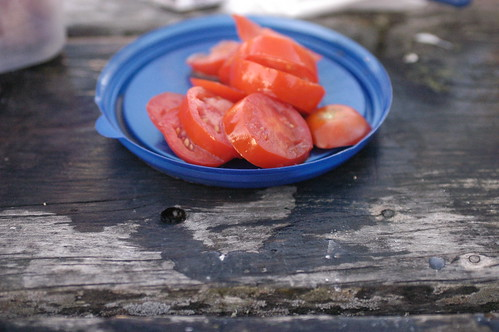 the last of the tomatoes | by shauna | glutenfreegirl