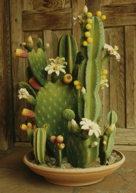 Zweifel Ceramic Cactus Flickr Photo Sharing