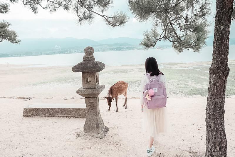 miyajima travel guide