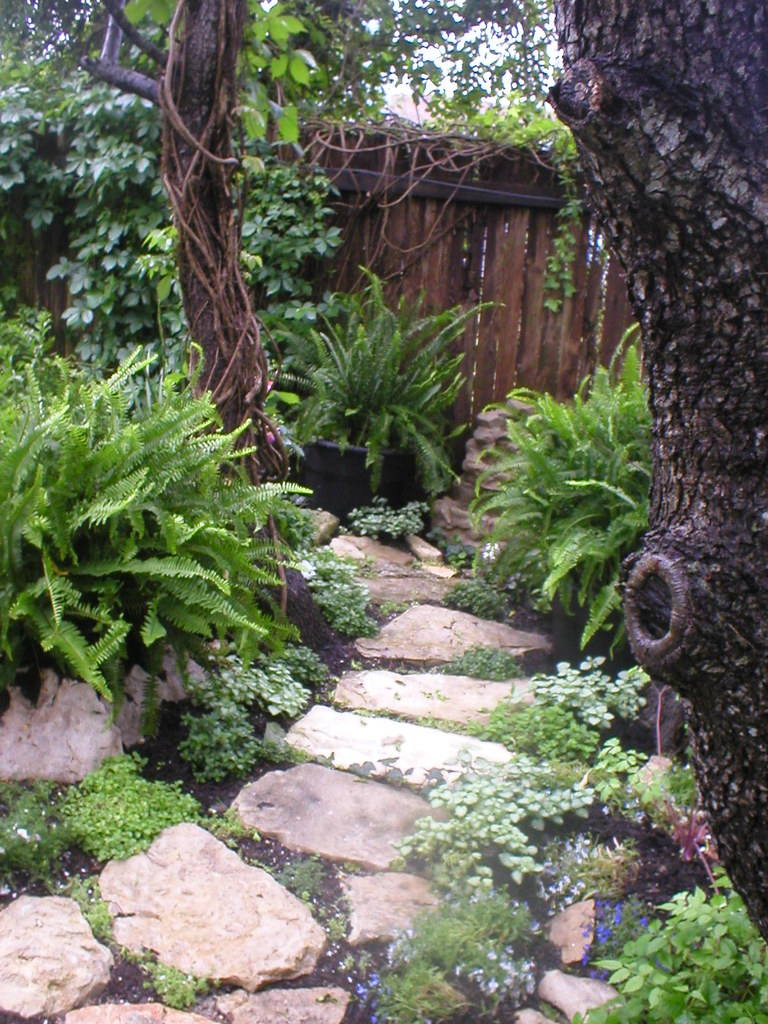 Stone Path To Woodland Area Shade Garden May 2006 Flickr