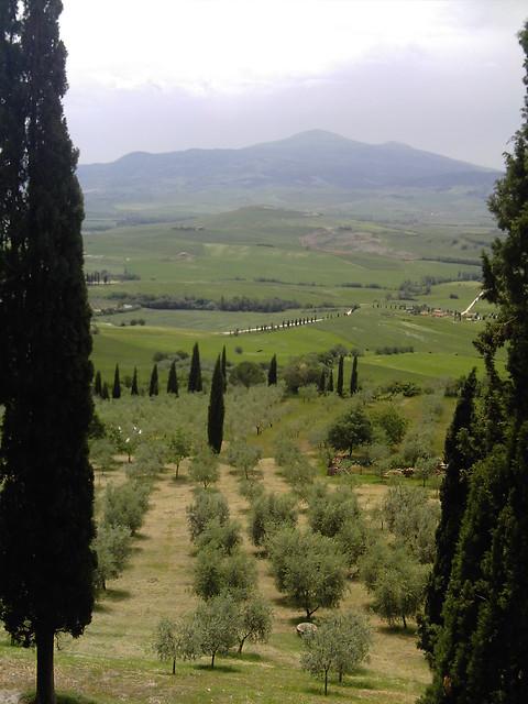 Michela S Tuscan Kitchen Episodes