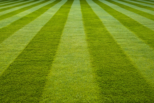 Stripes on the lawn - Emmanuel | by AdamKR