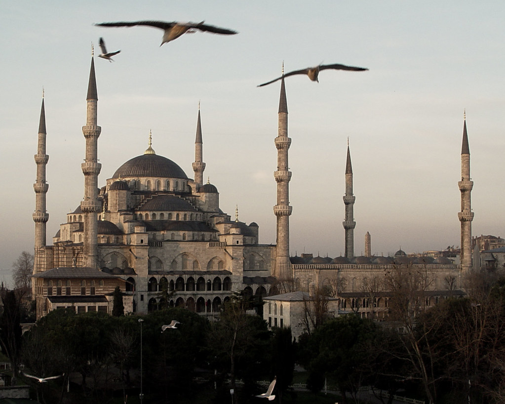 Istanbul Birds in Flight (Color) | Istanbul's Blue Mosque ...
