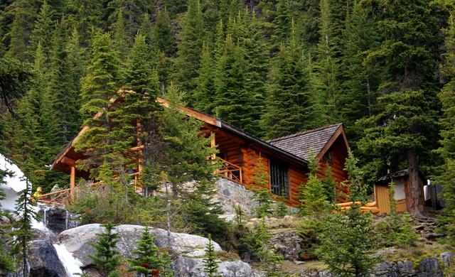 Tea House Hike Lake Louise Banff National Park Canad