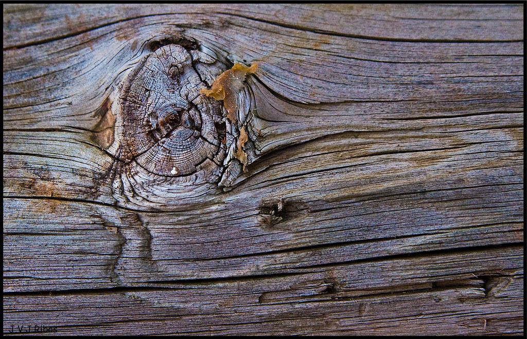 Las vetas de la madera cuando era ni a pensaba que un for Que son las vetas de la madera