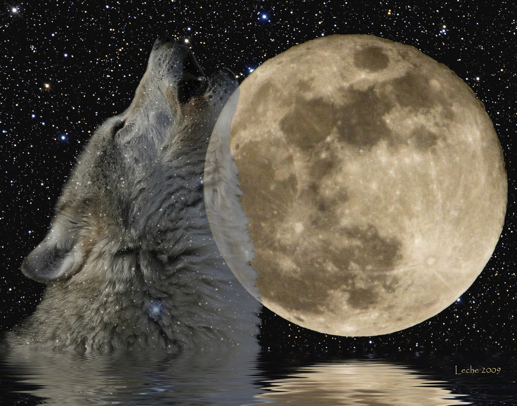 """Full """"Wolf"""" Moon - January 22, 2008   Please view LARGE ..."""