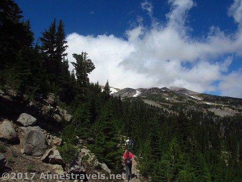 Approaching the ridgeline of Gnarl Ridge in Mt. Hood National Forest, Oregon