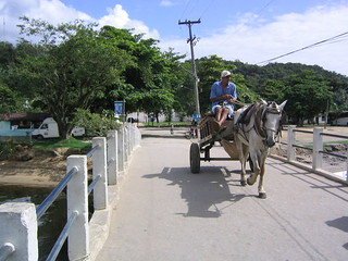 Horse and cart | by Phillie Casablanca