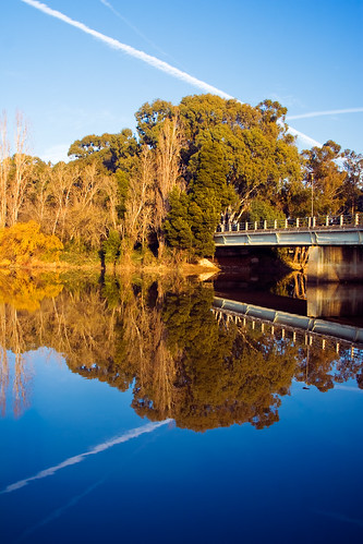 Jet Trails, Trees, Water and Reflections | by (nf) nunoferreira