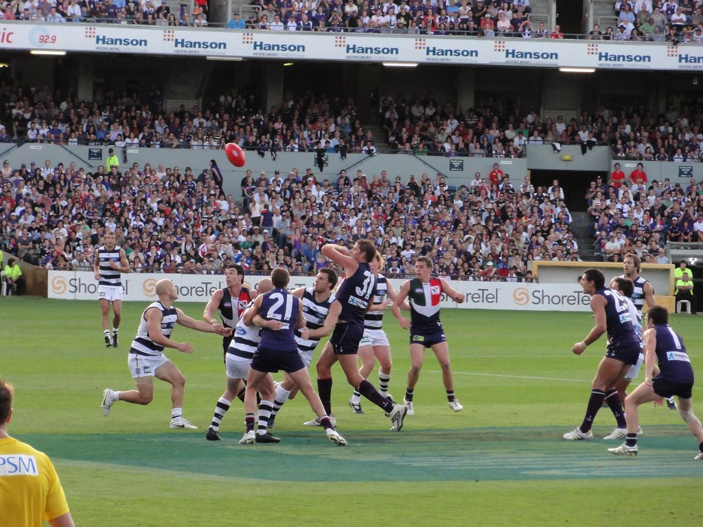 Image Result For Fremantle Dockers