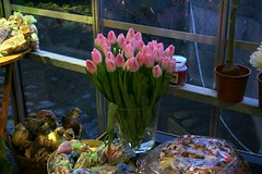 pink tulips in the corner | by BetsyW566