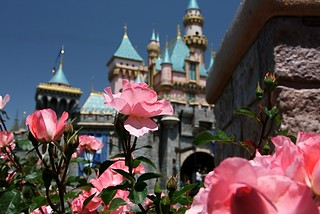 Disneyland Castle Court - Roses | by meanderingmouse