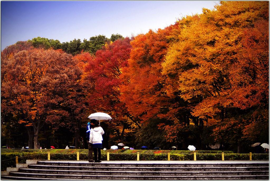 Ueno Park Autumn Found in Ueno Park | by