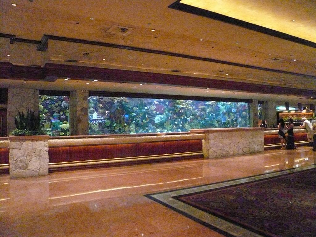 Lobby fish tank mirage hotel las vegas july 2009 feel for Fish tank las vegas